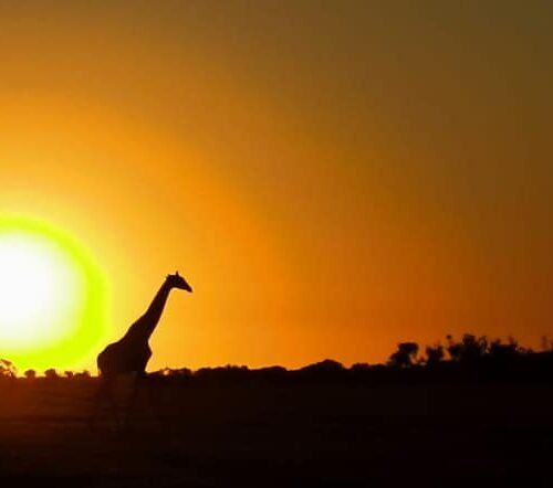 Hike Like A Girl 25 – Western Cape (Darling)